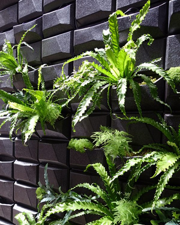 NYC Townhouse, Green Wall, Terra Cotta, Boston Valley Terra Cotta, Michael Chen